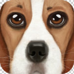 Ultimate Dog Simulator v1.1 Mod Apk Full
