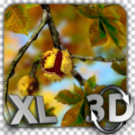 Autumn Leaves in HD Gyro 3D XL Parallax Wallpaper Apk v1.0